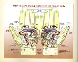 acupressure u2013 10 amazing facts read health related blogs