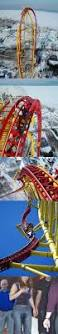 best 25 roller coaster quotes ideas on pinterest roller coaster