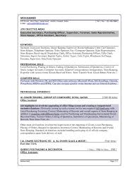 Data Entry Job Resume by Sample Resumes For Sales Positions Professional Sales Resume