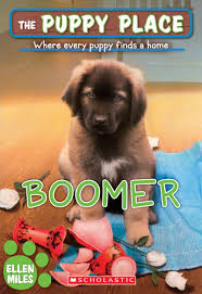 A Place Book Boomer By Scholastic