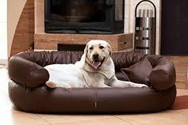canap pour chien grande taille animalerie canapés et fauteuils trouver des produits tierlando