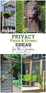 Screen Ideas For Backyard Privacy 167 Best Privacy Ideas Images On Pinterest Landscaping Garden