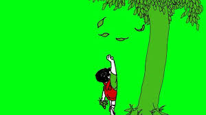 the giving tree the about give and take do you remember