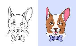 corgi stock illustrations u2013 954 corgi stock illustrations vectors