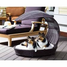 Princess Dog Bed With Canopy by 12 Beautiful Dog Beds That Will Instantly Enhance Your Home U0027s