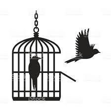 uccelli in gabbia uccelli in gabbia per gli uccellivettoriale aperto immagini
