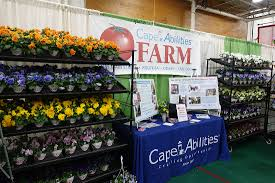 a sampling from the 59th hyannis rotary home garden u0026 lifestyle show