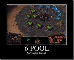 Starcraft 2 Meme - this is too funny jeu vid礬o pinterest starcraft game art