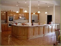 kitchen astonishing kitchen cabinet kings reviews kitchen cabinet