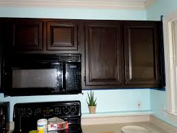 how to gel stain kitchen cabinets stylish gel stain kitchen cabinets home design ideas how to