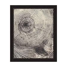 tree rings art images Tree rings cross section in black and white framed jpg