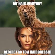 Hairdresser Meme - ever happened to you imgflip