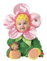 12 Months Halloween Costumes Cutest Baby Halloween Costumes