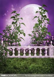 prom backdrops magical fairytale prom backdrop princess background moon