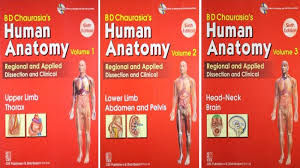 Human Physiology And Anatomy Pdf Bd Chaurasia Human Anatomy Ebook Download Free In Pdf Format