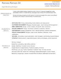 Marketing Manager Resume Creative Marketing Manager Resume Waiter Busboy Resume
