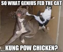 Funny Chicken Memes - hwaaaaaaaaaaaaaa imgflip