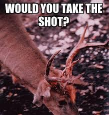 Hog Hunting Memes - hunting memes hunting magazine on hog hunting memes broxtern