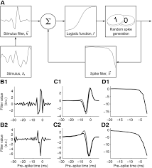 low dimensional sensory feature representation by trigeminal