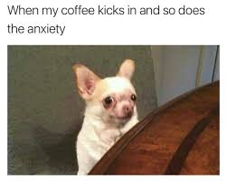 Anxiety Meme - 65 memes for anyone with a sense of humor about their anxiety