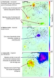 Top 5 U2013 Low Or by Spatial Genetic Analyses Reveal Cryptic Population Structure And