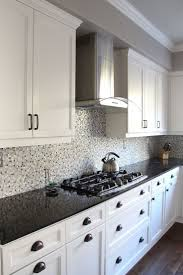 kitchen cabinets san francisco 143 best projects images on pinterest kitchen shelves bed room