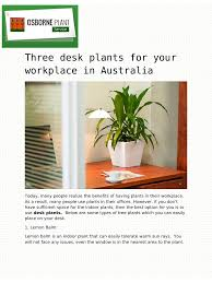 Best Low Light Indoor Plants by Three Desk Plants For Your Workplace In Australia Pdf Pdf Archive