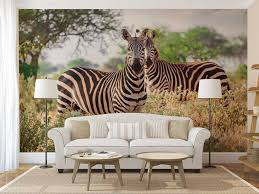 wall mural jungle zebras wall mural wallpaper zebra jungle wall mural jungle zebras wall mural wallpaper zebra jungle wallpaper wall decal