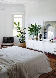 Ikea Plant Ideas by Best 25 Ikea Ps Ideas On Pinterest Ikea Ps Cabinet Black Tv