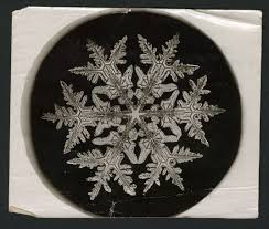 snowflake bentley the man who revealed the hidden structure of falling snowflakes