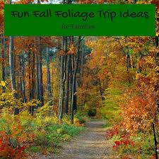 308 best fall travel ideas for families images on