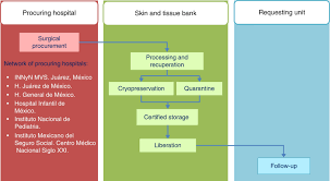 skin and tissue bank operational model for the recovery and
