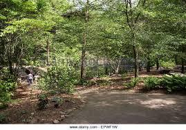Clemson Botanical Garden by University Of South Carolina Stock Photos U0026 University Of South