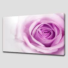 purple rose large canvas wall art pictures prints canvas print art