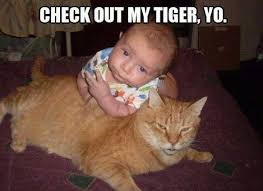 Funny Baby Memes - 20 hilarious funny cute baby meme on internet reckon talk
