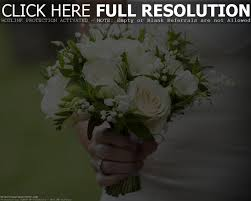 Cheapest Flowers 100 Cheap Flowers For Wedding 21 Cheapest Flowers For