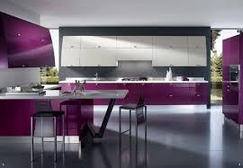 White Kitchen Cabinets With Grey Walls by Kitchen Kitchen Modern Kitchen Decorating Design With Purple