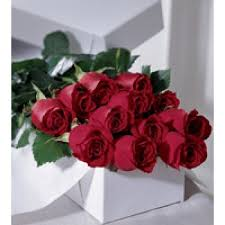 boxed roses 12 roses gift boxed rine s florist