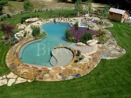 Swimming Pool Backyard by Natural Swimming Pools Cleaning The Pool With Plants