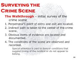 crime scene investigation ppt download