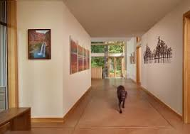 Flooring Options For Living Room Pet Friendly Living Room Flooring Options Express Flooring