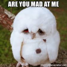 Are You Mad At Me Meme - are you mad at me sad owl baby meme generator