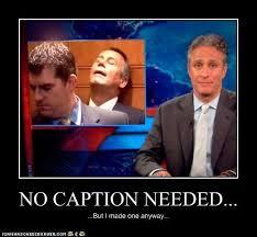 Jon Stewart Memes - animal capshunz jon stewart funny animal pictures with