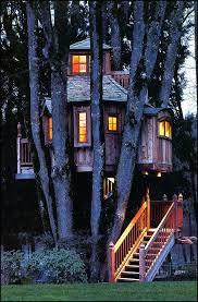 Tree House Home Best 25 Tree House Masters Ideas On Pinterest Rustic Window