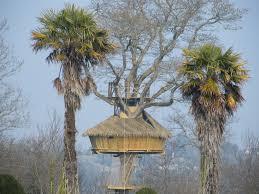 chambre d hote cabane dans les arbres cabane dans les arbres bretagne château du val d arguenon