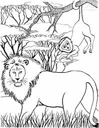 happy lion coloring pages gallery colorin 1110 unknown