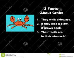 facts about crabs stock illustration image 59132714