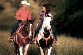 Texas how far can a horse travel in a day images Apha jpg