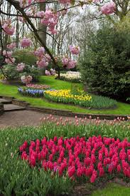 pictures of beautiful gardens with flowers spring flower garden free stock photo public domain pictures