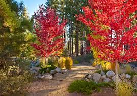 2015 fall color trends parc forêt at montrêux